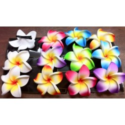 Plumeria Flower on Clip