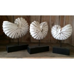 Wooden Shell Decoration (3pcs Set)
