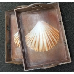 Wooden Tray Clam Shell(1 Set)