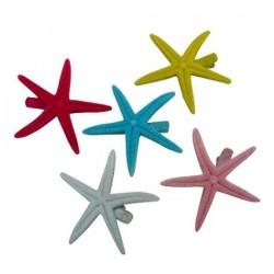 Star Fish Hair Clip