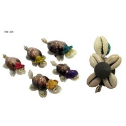 Mini Seashell Turtle Magnet(Decor)