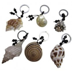 Sea Shell Key Chain