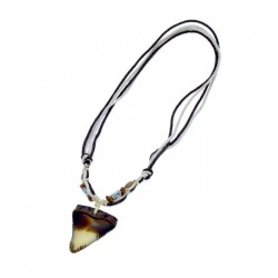 Resin Shark Tooth Pendant Necklace