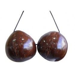 Plain Coconut Bra