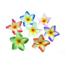Plumeria Flower Hair Clips