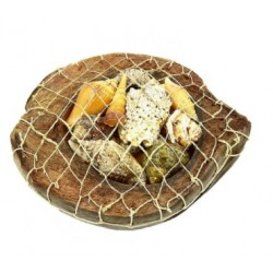 Coconut Shell Basket With Sea Shells Display