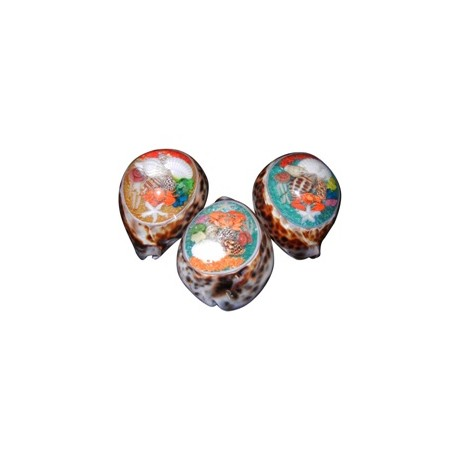 Resin Cowrie Shell With Sea Animals