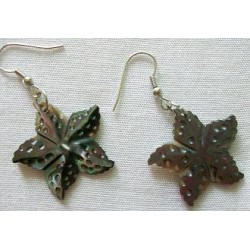 Black M.O.P Starfish Earring