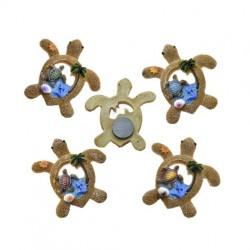 Ocean Sand Sea Shells Turtle Magnets