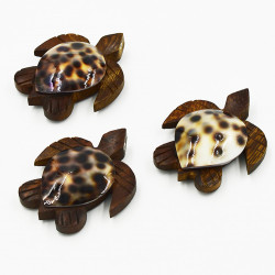 Sea Shell With Turtle Magnet