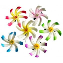 Tiare Flower Clips