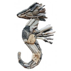 Root Wood With Sea Horse