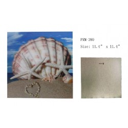 3D Picture-Sea Shell With Starfish