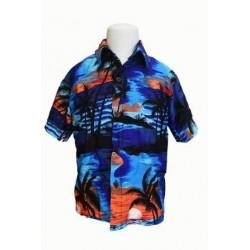 Boy's Tropical Aloha Shirt S/M