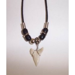 Shark's Tooth Cord Necklace