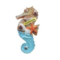 Ocean Sand Sea Shells Sea Horse Magnets-California