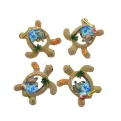 Ocean Sand Sea Shells Turtle Magnets-California